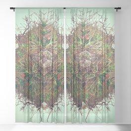 Beginnings No 1 Sheer Curtain