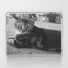 Street Kitty Laptop & iPad Skin