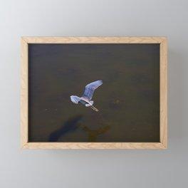 Cypress Flight Framed Mini Art Print