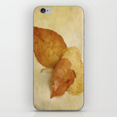 Autumn StillLife I iPhone & iPod Skin