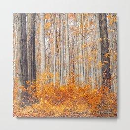 orange autumn Metal Print