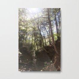 Mystical Magic of Trees pt.10 Metal Print