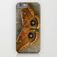 The Art of Nature iPhone 6s Slim Case