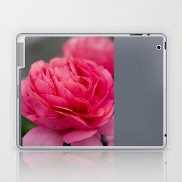 Vivid pink flower Laptop & iPad Skin