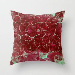 Nature paints serie 3 Throw Pillow