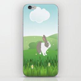 Dutch rabbit in field iPhone Skin