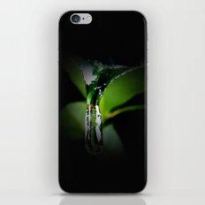 Winter Leaf iPhone & iPod Skin