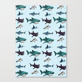 Shark Cage Canvas Print
