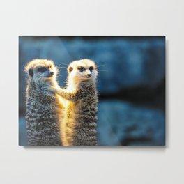 zoo mongoose meerkat cute watch Metal Print