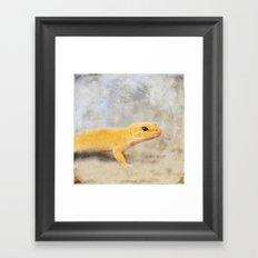 Portrait of a Leopard Gecko Framed Art Print