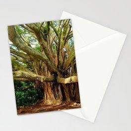 Hana Banyan Stationery Cards