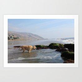 Day at the beach Art Print