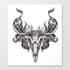 Deer Skull  Canvas Print