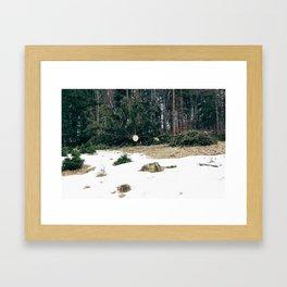 Existentiallis IV Framed Art Print