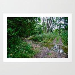 Creek Clearing Art Print