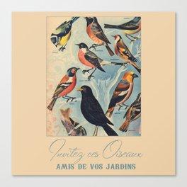 French Birds Canvas Print