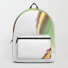 Dew Inversion Backpack