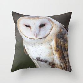Barn Owl 1 Throw Pillow