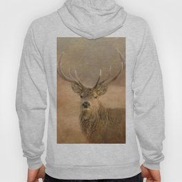 Autumn Stag Hoody