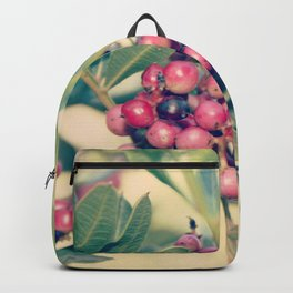Happy berry V Backpack