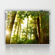Something 'Bout The Sun Between The Trees Laptop & iPad Skin