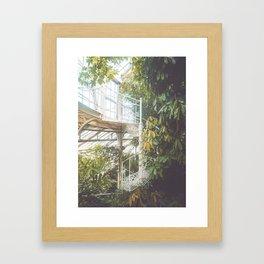 Greenhouse 2 Framed Art Print
