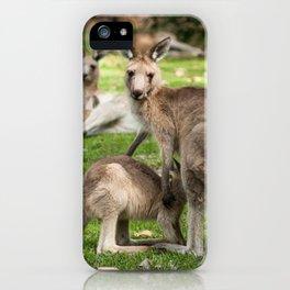 Mother Eastern Grey Kangaroo and Joey iPhone Case