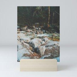 Shannon Falls Creak Mini Art Print