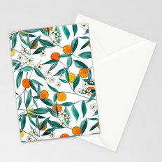 C320 Stationery Cards