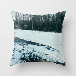Nature walk in Washington DC Throw Pillow