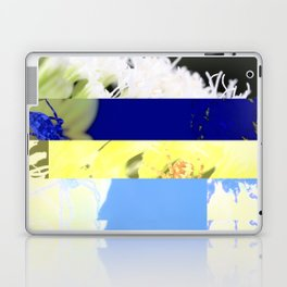 crash_ 12 Laptop & iPad Skin