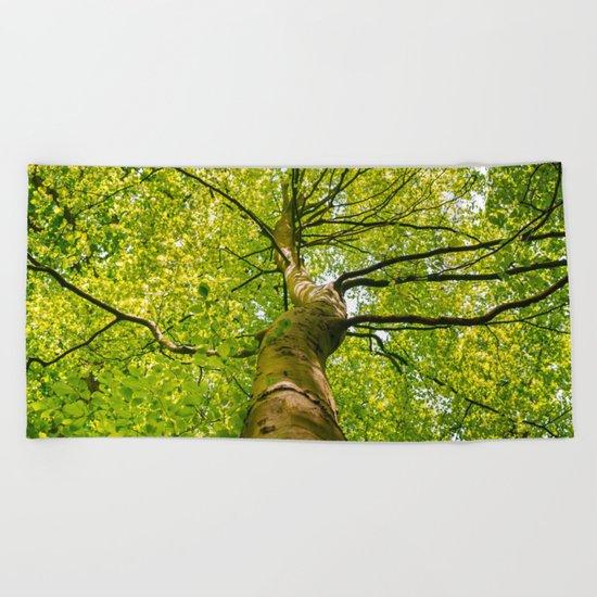 Sunlight Through Green Tree Crown Beach Towel