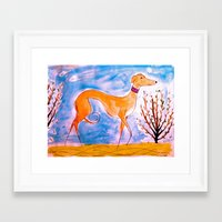 greyhound Framed Art Prints featuring Greyhound by Caballos of Colour
