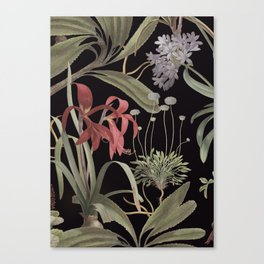 Dark Botanicals (pillow variant) Canvas Print