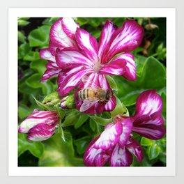 Purple bee Art Print