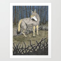 coyote Art Prints featuring Coyote by Lucan Joshua Jackson