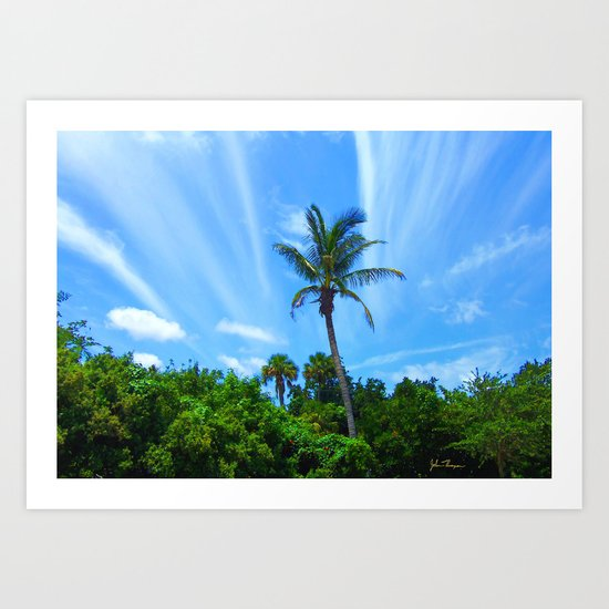 Paradise Palm Art Print