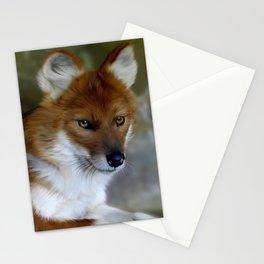 Dhole Stationery Cards