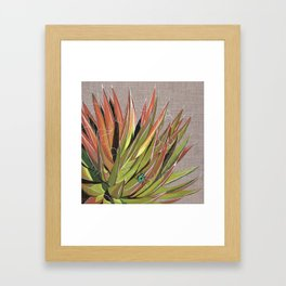 Yucca filifera with beetle Framed Art Print