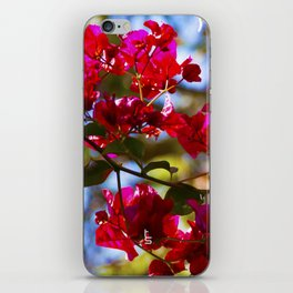 Bougainvillea I iPhone Skin