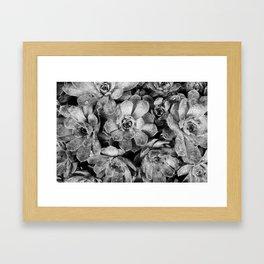 Moisture Framed Art Print