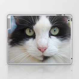 The Curious Cat Laptop & iPad Skin