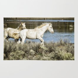 Two of a Kind Rug