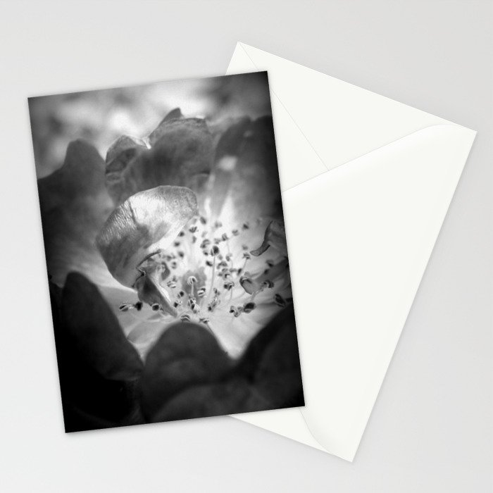 Light Comes From Within Stationery Cards