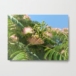 Fluffy Pink Flower Metal Print