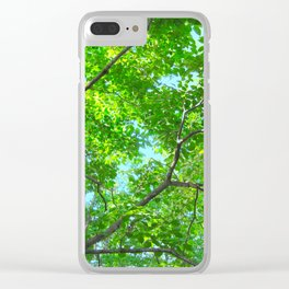 Canopy of Green, Leafy Branches with Blue Sky Clear iPhone Case