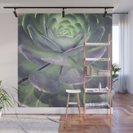 Echeveria succulent digital painting Wall Mural
