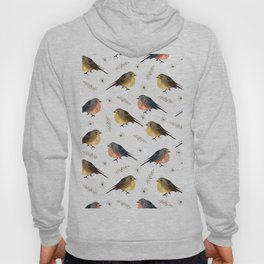 Cute red brown hand painted robin Christmas bird floral Hoody