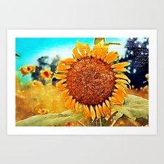 Summer's End -- Botanical Sunflower Art Print