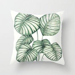Calathea Orbifolia botanic leaves Throw Pillow